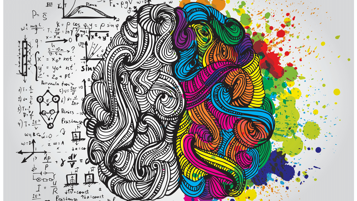 drawing of a brain showing one half with numbers indicating logic and the other half with colors indicating creativity during the design process
